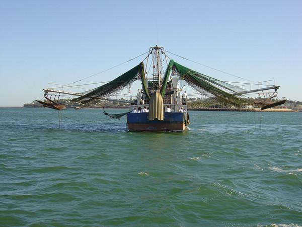 Bateau de pêche crevettes à MADAGASCAR surgelés-FRESHPACK