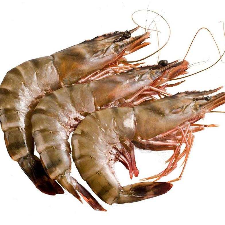 Crevettes sauvages de Madagascar surgelées -Freshpack