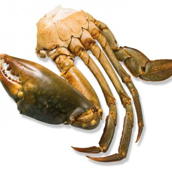 Frozen MANGROVE CRAB SECTIONS-Freshpack