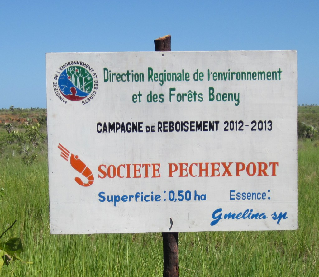 campagne reboisement pechexport-freshpack