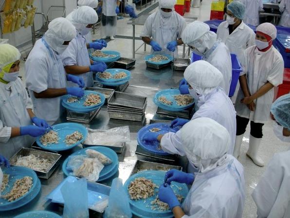 L'usine de notre partenaire thaïlandais surgelés-FRESHPACK