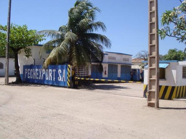 Notre usine PECHEXPORT à Mahajunga surgelés (Madagascar)-FRESHPACK