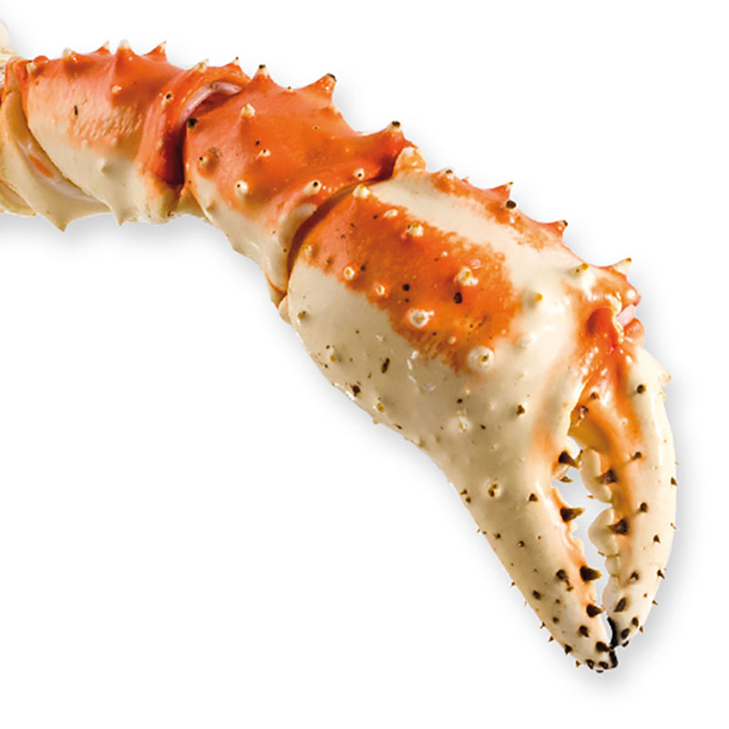 Frozen INDIVIDUAL CLAWS OF KING CRAB 1-Freshpack