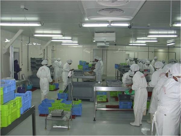 Producteurs Produits de la mer surgelés-Freshpack3